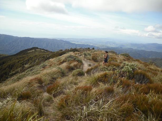 Curniss on Mount Kapakapanui