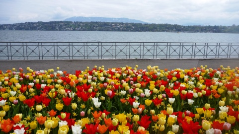 Geneva on bike