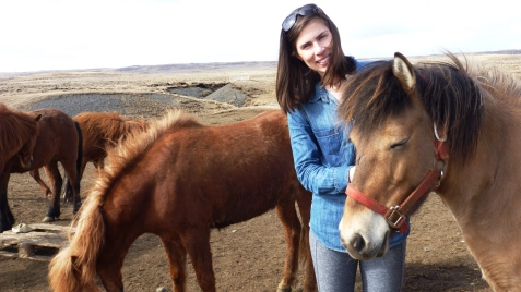 Kristen and furry Icelandic horses