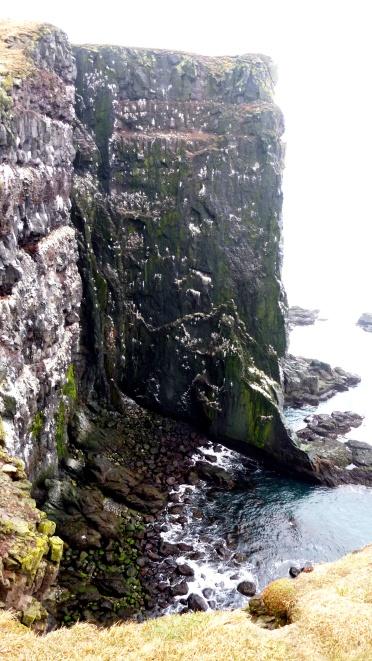 Látrabjarg cliff