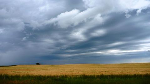 Dramatic horizons