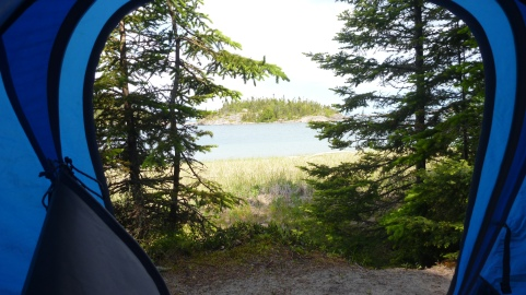 View from our tent at Fish Cove
