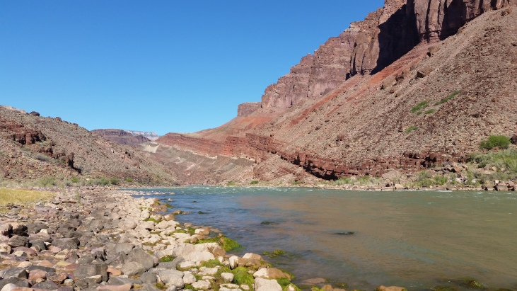The Colorado River at the junction of the Tonto and New Hance Trails